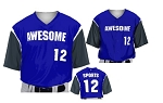 Teamwork Custom  Baseball Jerseys (Touch Em All)
